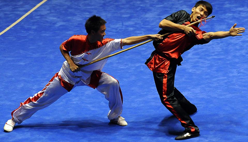 Wushu Insights by Mark...